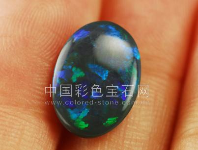 黑欧泊,opal,澳大利亚